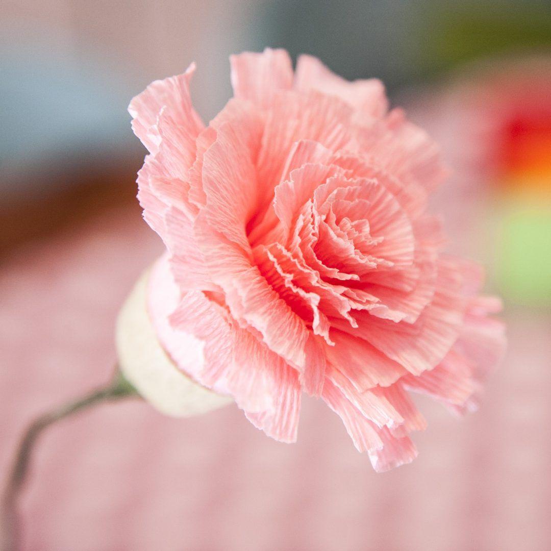 Taller de Flores de papel Crepe,
