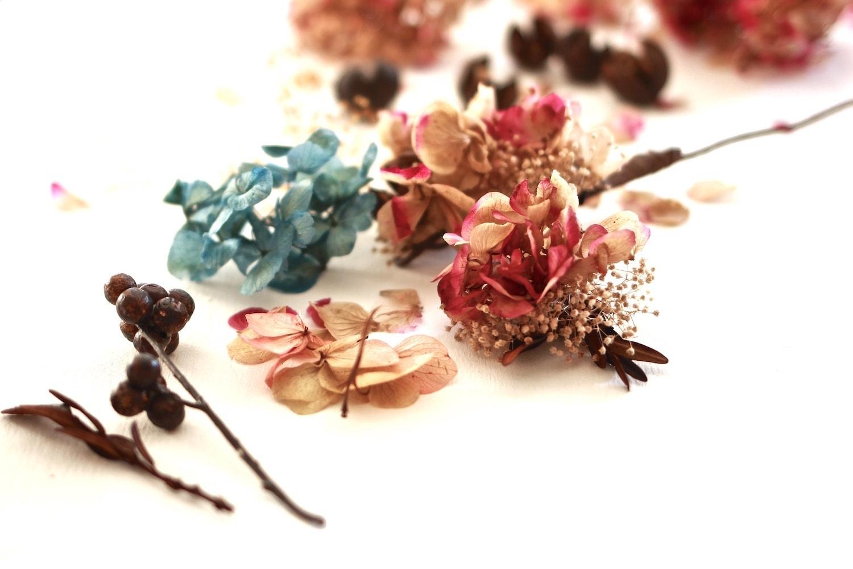 las magicas flores preservadas exquisitae1