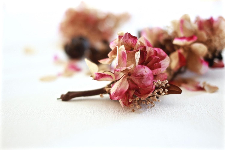 las magicas flores preservadas exquisitae4