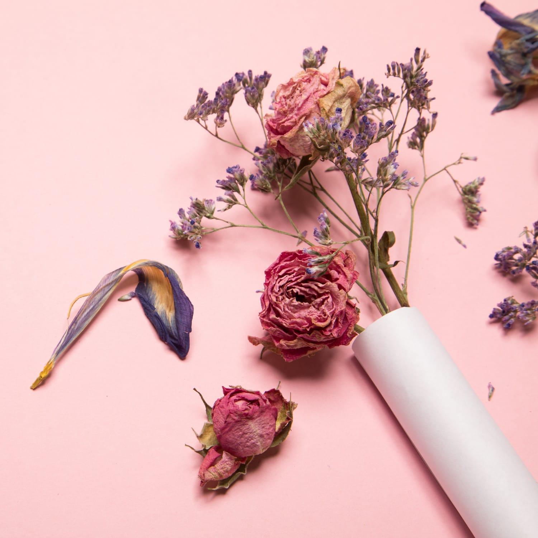 magicas flores preservadas 0