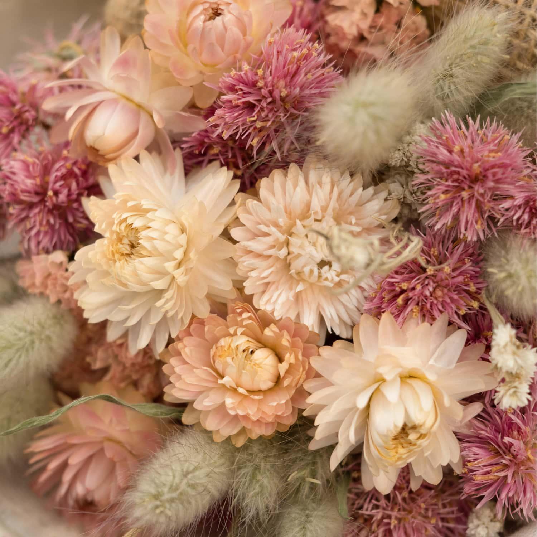 magicas flores preservadas 1